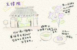 天徳院_20190711-042435.png